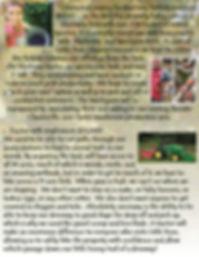 budsr promo pkg title pages 4.jpg