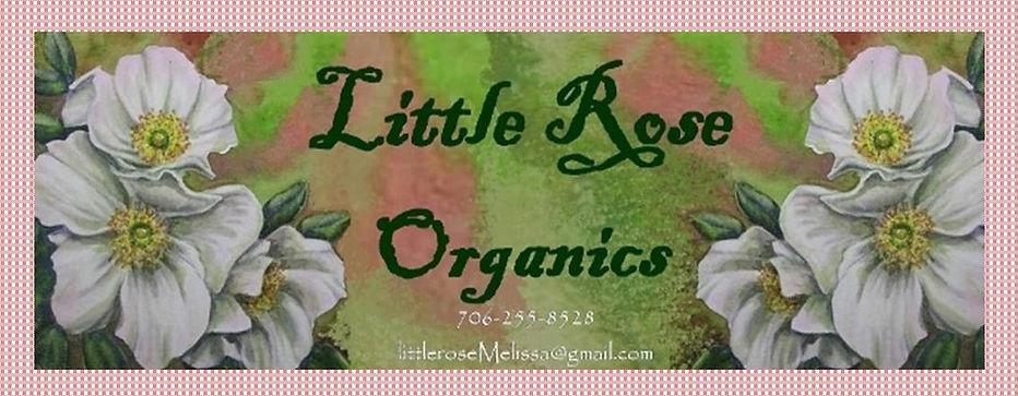 LRO banner with gingham.jpg