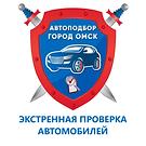 Экстренная проверка автомобилей в Омске.