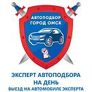 Автоподбор с экспертом на день в Омске.p