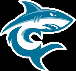 Sky_Shark_Logo.png