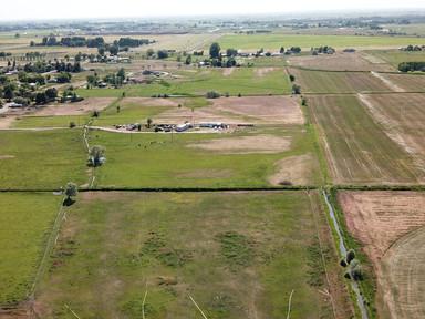 Blackfoot Farm