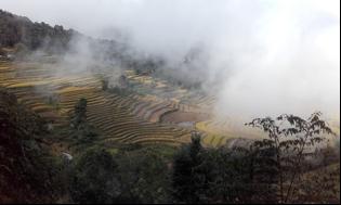 Kitajska in njen zeleni vrt, provinca Yunnan