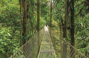 kostarika.jpg