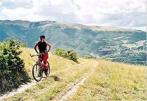 camino-de-santiago-en-bici_6737_p.jpg