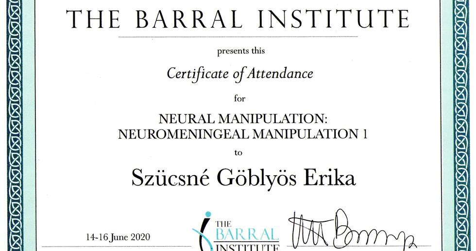 Neuromeningeális manipuláció.jpg