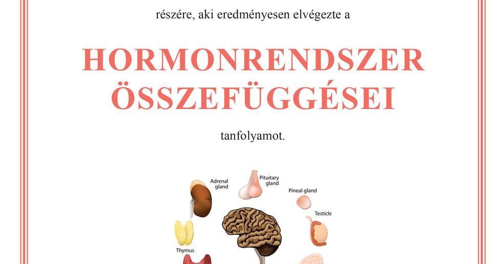 Hormonrendszer.jpg