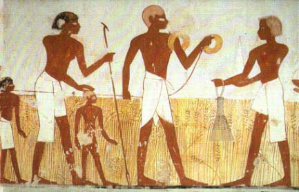 Dois Agrimensores medindo o campo com a trena enrolada no braço, para estimar a coleita
