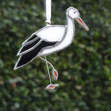 Standing Stork