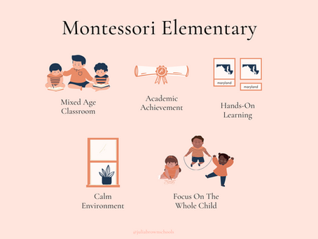 5 Things You Should Know About Our Montessori Elementary Class...