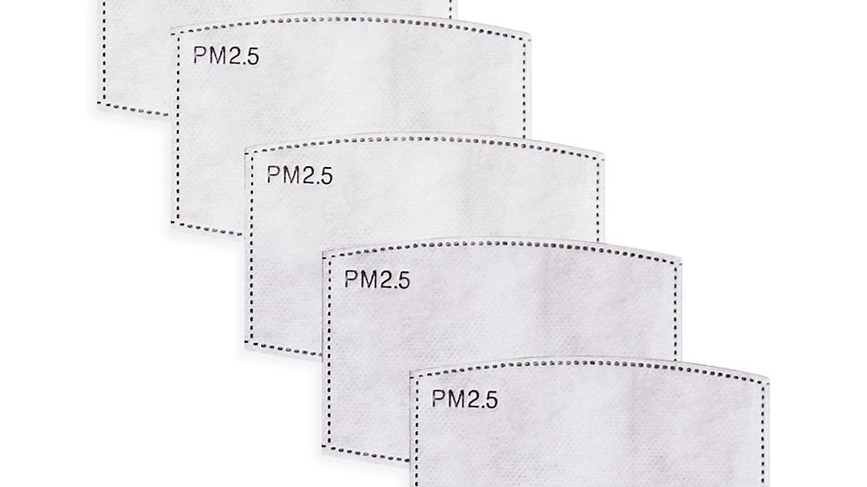 PM2.5 Filter (Pack of 10)
