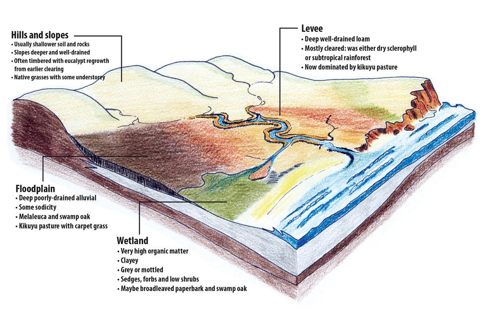 soils in the landscape lrg.jpg