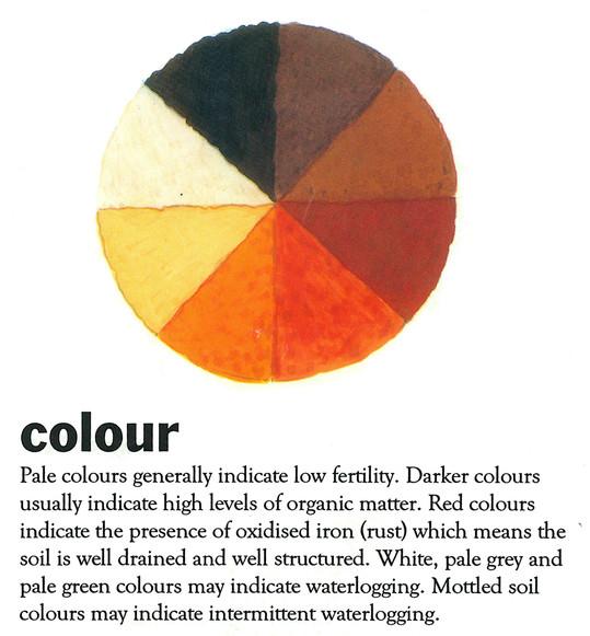 soil colour.jpg