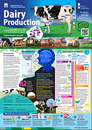 Dairy production poster