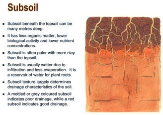 subsoil.jpg