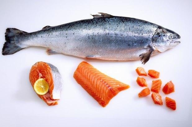 North Atlantic Seafood (9)