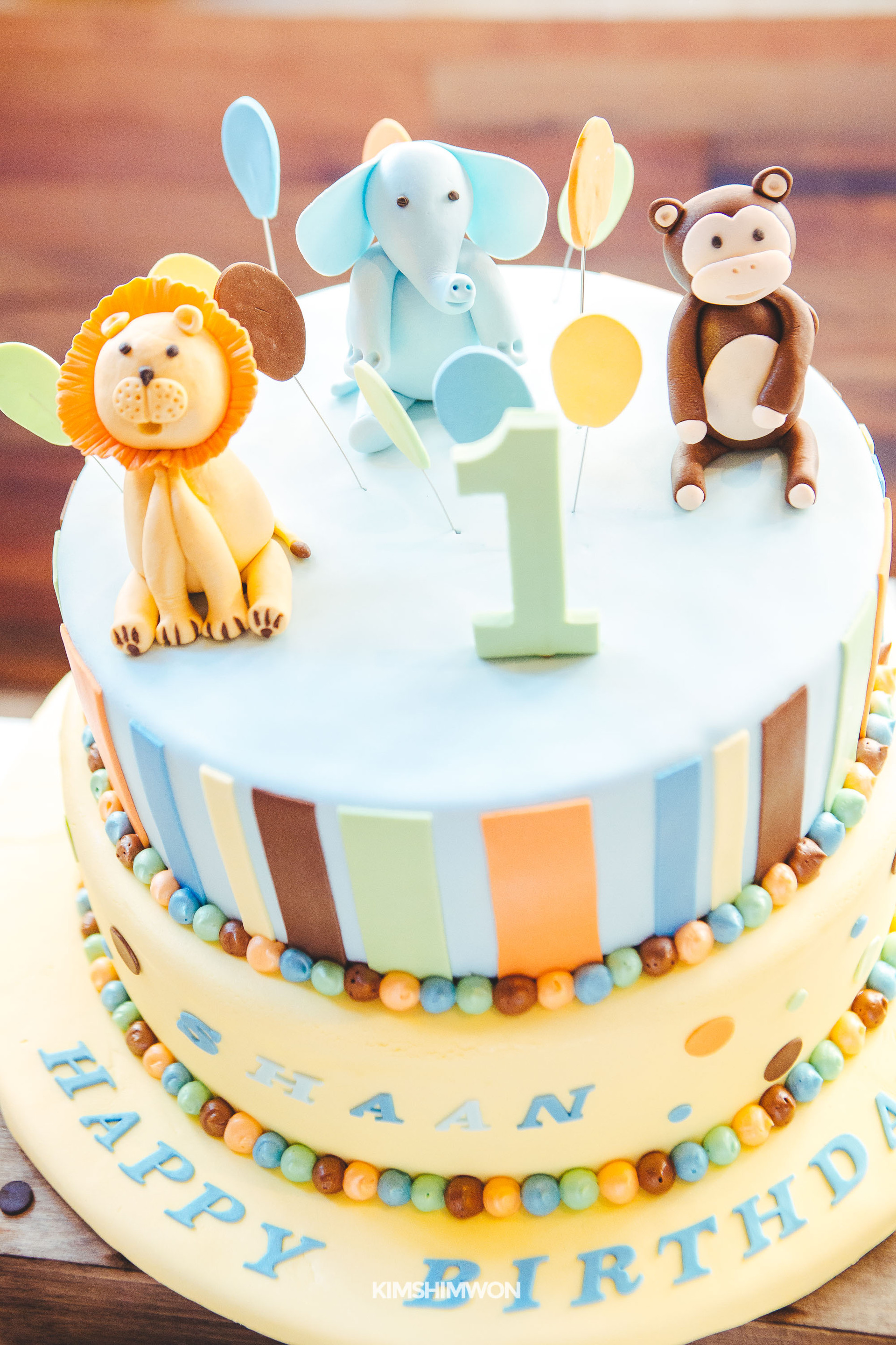 Shaan First Birthday 10.15.16-48.jpg