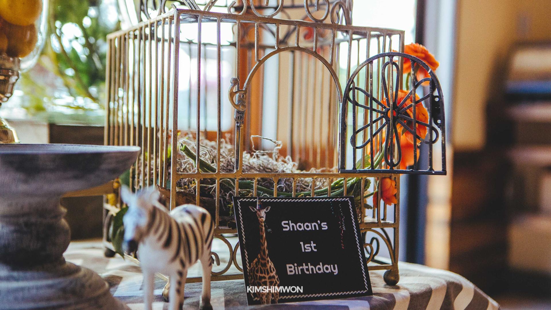 Shaan First Birthday 10.15.16-6.jpg