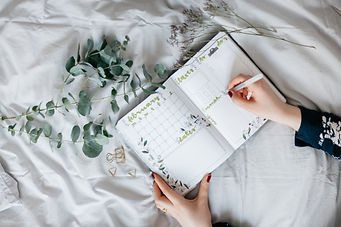 the-journal-garden-vera-bitterer-682529-