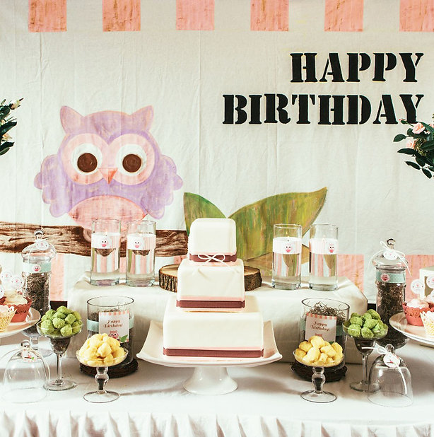 Event and Creators Maryland DC Virginia Owl Purple Themed Birthday Event Ellicott City