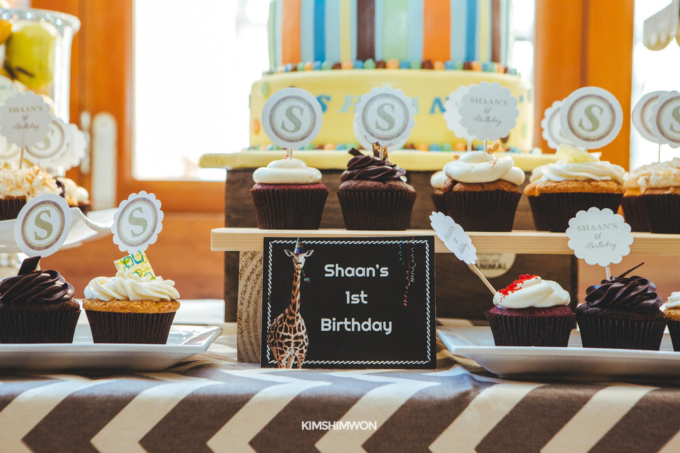 Shaan First Birthday 10.15.16-38.jpg
