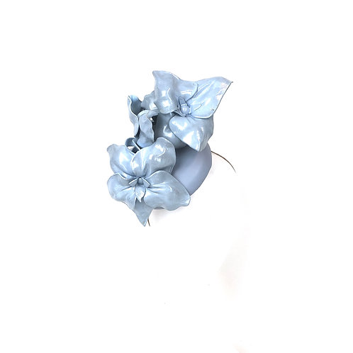 The Powder Blue Orchid