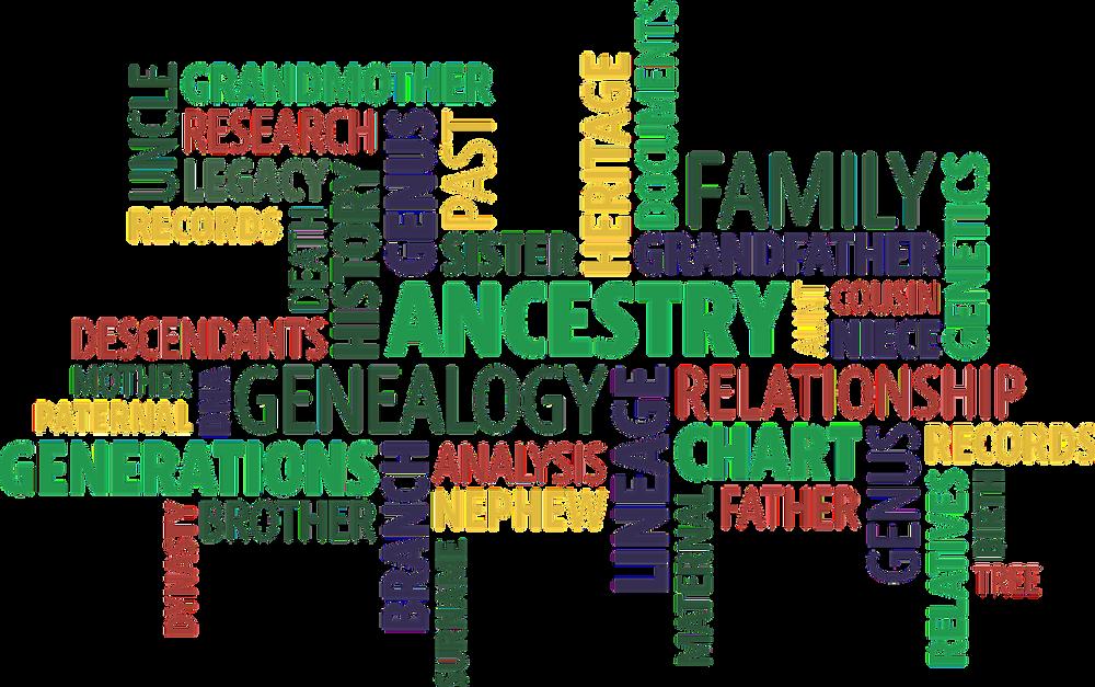 DIY genealogy vs. hire a genealogist