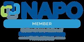 NAPO-member-01 translucent block.png