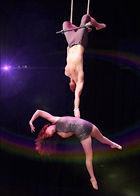 Circus, Trapeze, unique entertainment