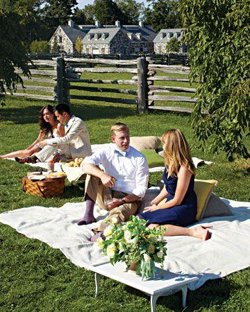 wedding reception picnic 2