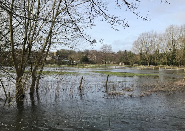 River Flooded 1.jpg