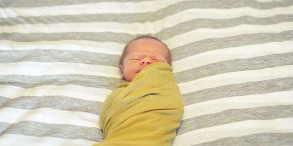 FREE Online Newborn Sleep Workshop 2