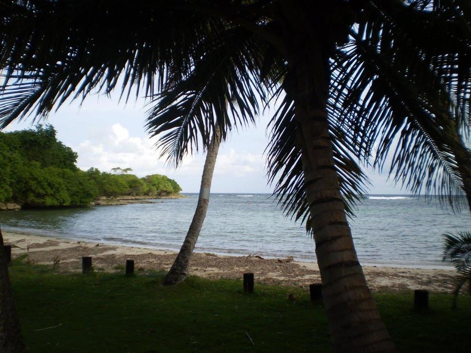 Les 3 cocotiers vue plage et mer à 20m