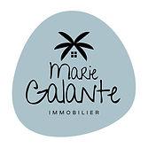 logo-MGI-BlackBlue.jpg