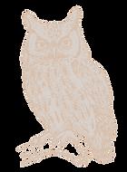 OWL_edited_edited_edited_edited_edited.p