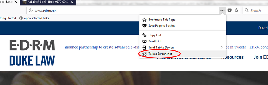 Taking Screen Grabs with FireFox