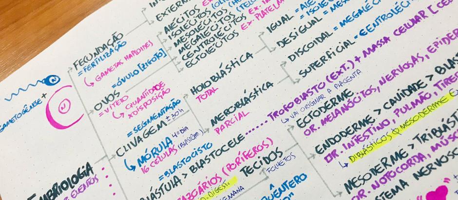 Como fazer mapas mentais para estudar