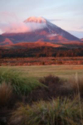 Tongariro.png