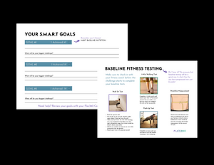 Goals and Test.png