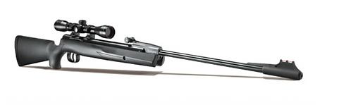 Remington Express Synthetic .22