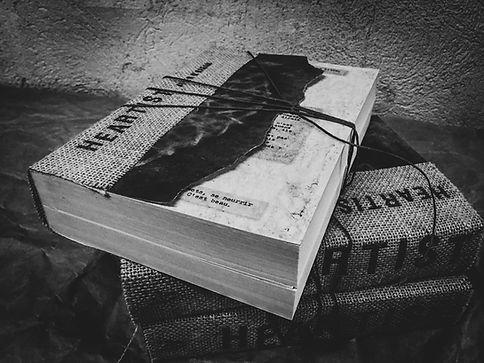 Art book Heartist by Aylen O'Hagan Livre recueil d'interviews