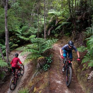 2019_03_UVEX_Gerighs_Kaiteriteri_NZ_Kike