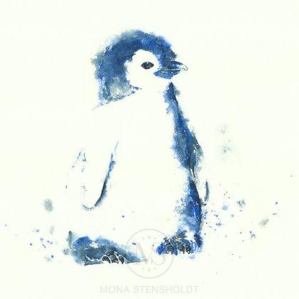 Fugl - Pingu