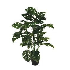 Artificial plant $15