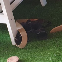 Binoculars $10