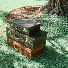 'Suitcase' trunk $10