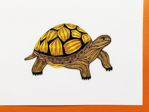 Iconic Quilling Tortoise Greeting Card