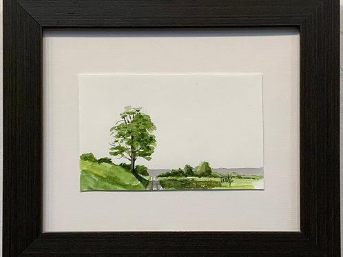 Roadside Tree Watercolor by Marty Owings