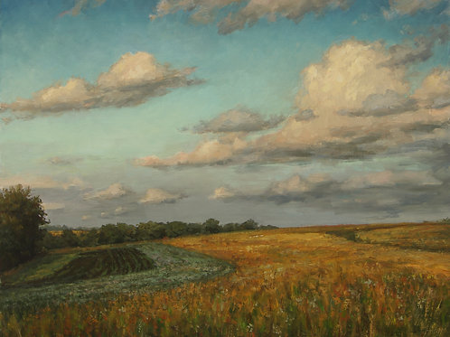"""June Fields"" Hannah C. Heyer Oil Painting"