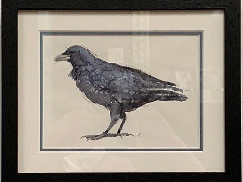 Crow by Kurt Schulzetenberg